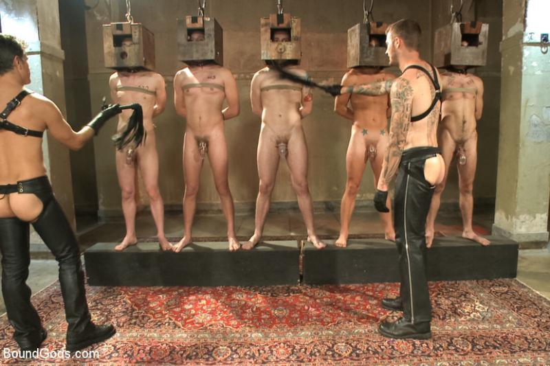 Nude male sex slaves