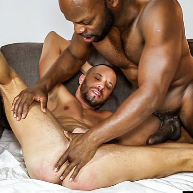 Gay cutler x
