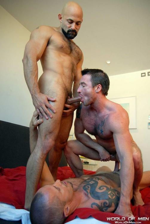 Rocco Banks, Rocky Torrez et Ross Hurston - World Of Men-7949