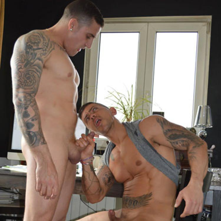 Gay Porn Galleries  Stag Homme  Bananaguide-2235