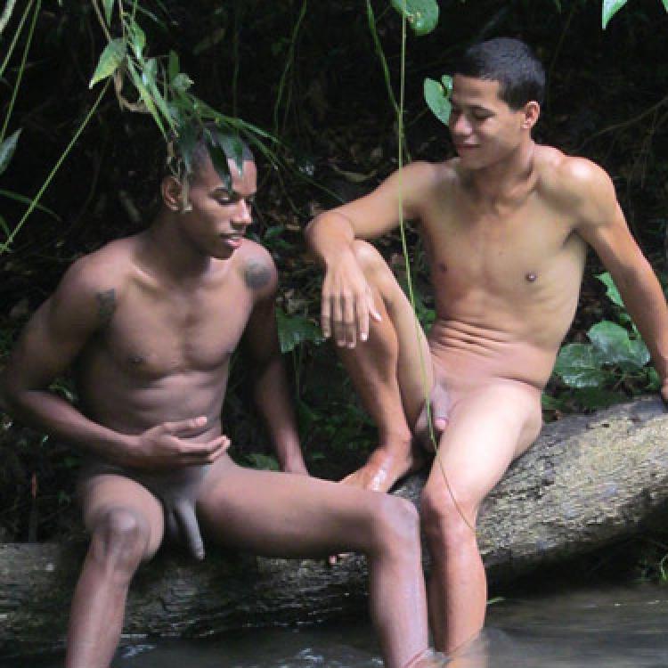 Miami homofil porno