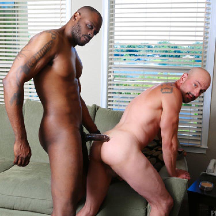 gay Star du porno diesel