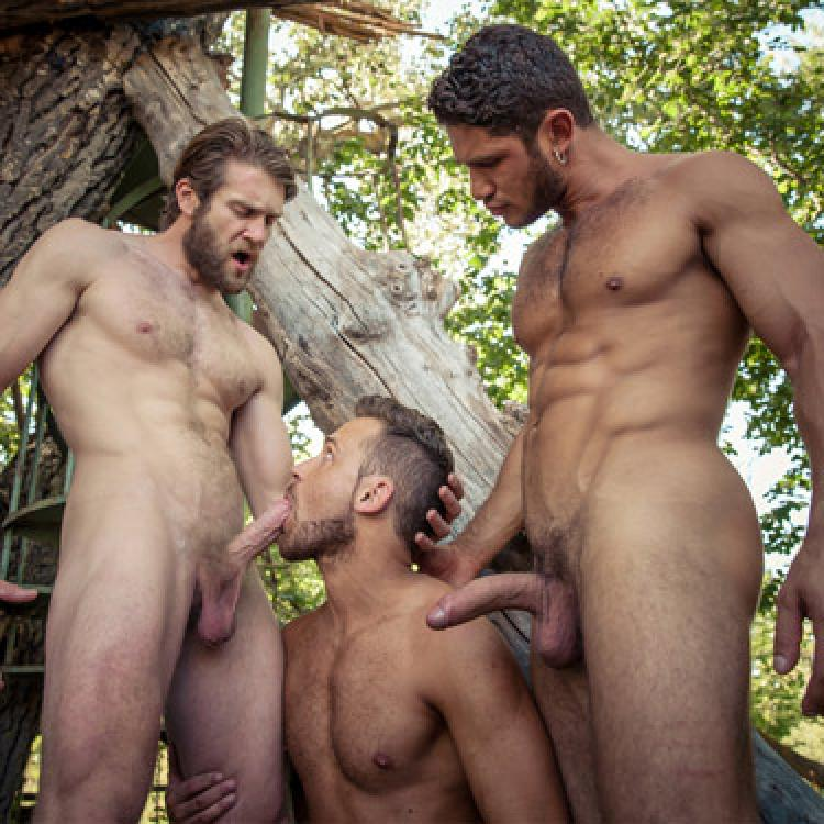Colby Keller, Dato Foland and Logan Moore - Men.com photo gallery