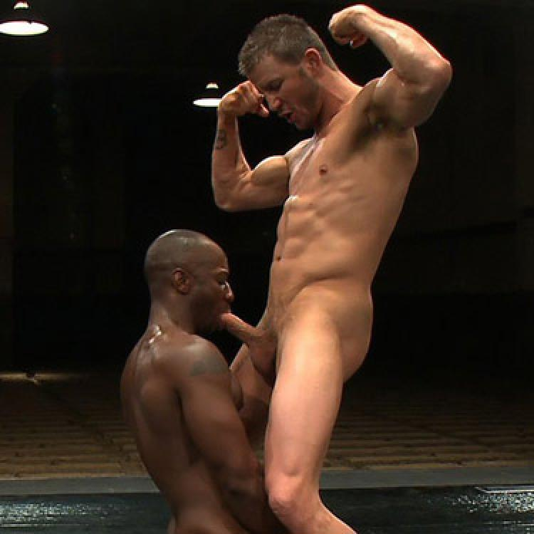 Fist fighting guy gay fisting orgy 4