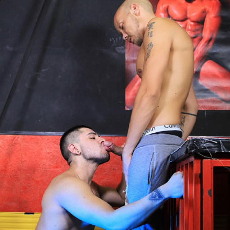 Dean Summers fucks Fabian - Raw - Butch Dixon photo gallery
