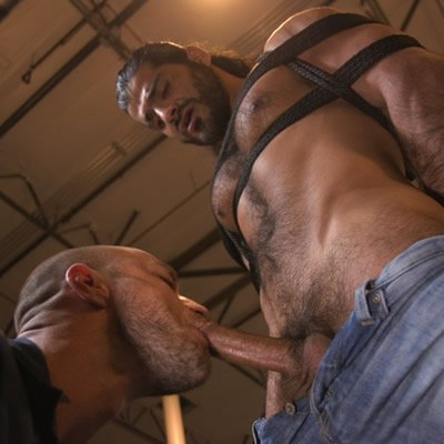 Jessie Colter edges Ali Liam - Kink Men photo gallery