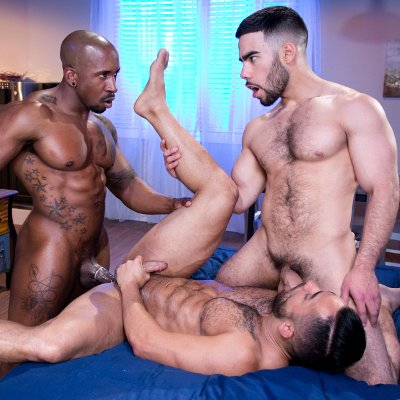 Bruno, Max and Papi - Raging Stallion photo gallery