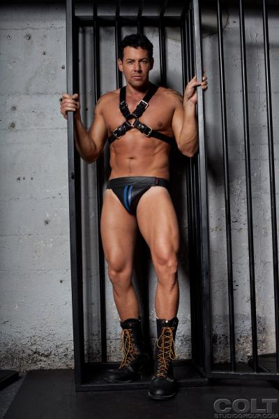 muscles in leather colt studio bananaguide