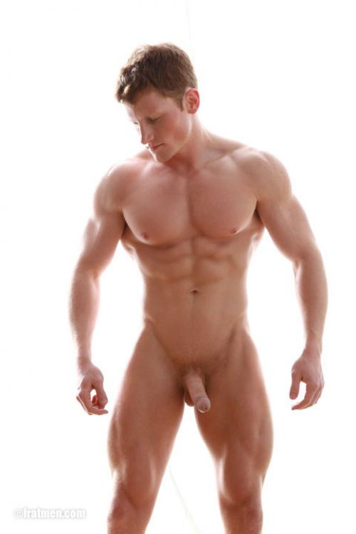 Blonde Hairy Gay Porn