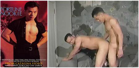 Brandon lee gay porn videos